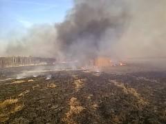 Apele nie pomagają. 12 pożarów traw