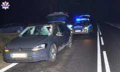 Sarna wpadła do auta przez przednią szybę. 42-latek trafił do szpitala