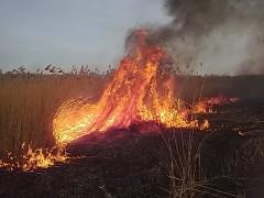 Podczas świąt strażacy 3 razy gasili pożary traw