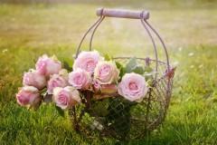 Jakie kwiaty wybrać dla dziewczyny?