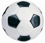 Rusza Halowa Liga Piłki Nożnej oPuchar Burmistrza Miasta Biłgoraj