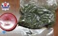 Policjanci zabezpieczyli marihuanę