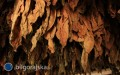Pomoc dla plantatorów tytoniu