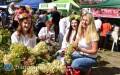 Festiwal Smaków dla Jasia