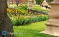 Jak wybrać sprzęt do nawodnienia ogrodu?