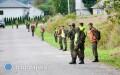 Terytorialsi ileśnicy szukają padłych dzików