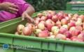Unijny kompromis wsprawie polityki rolnej po 2021 roku
