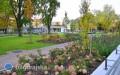 Tysiące nowych drzew ikrzewów nasadzono wBiłgoraju