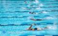 Pływanie na Igrzyskach Olimpijskich, czyli generator medali!