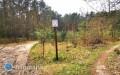 Spotkanie wsprawie lasu - kwestia wycinki pozostaje otwarta?