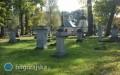 Burmistrz apeluje oograniczenie ilości sztucznych kwiatów izniczy na cmentarzach